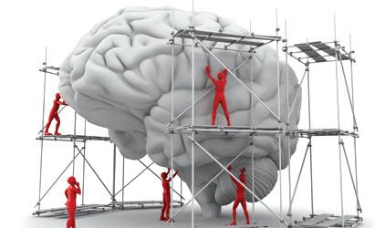 teen-brain-422x250